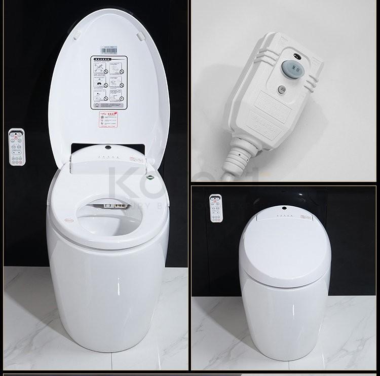 Bồn cầu điện tử - thiết bị vệ sinh thông minh của thời đại mới